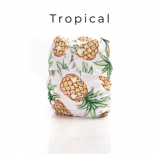 tropical_1572829149